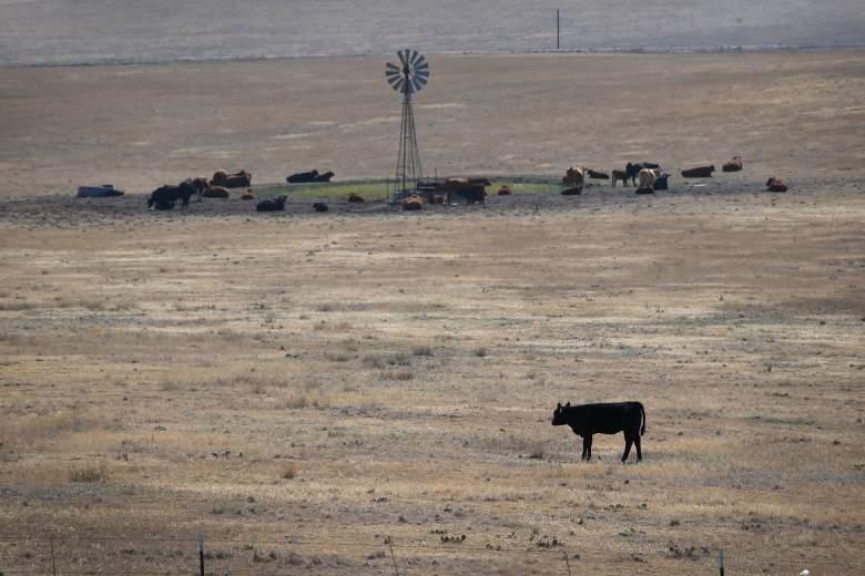 La población rural de Hugo, Colo., Está encontrando rastros de THC en su suministro de agua. (Getty)