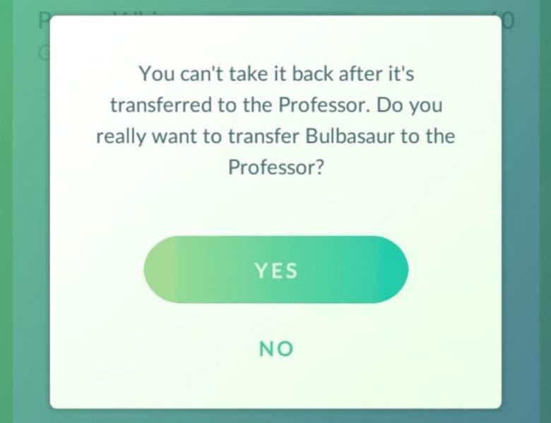La transferencia de Pokemon al profesor Willow dará a los jugadores de caramelo adicional. (Niantic)