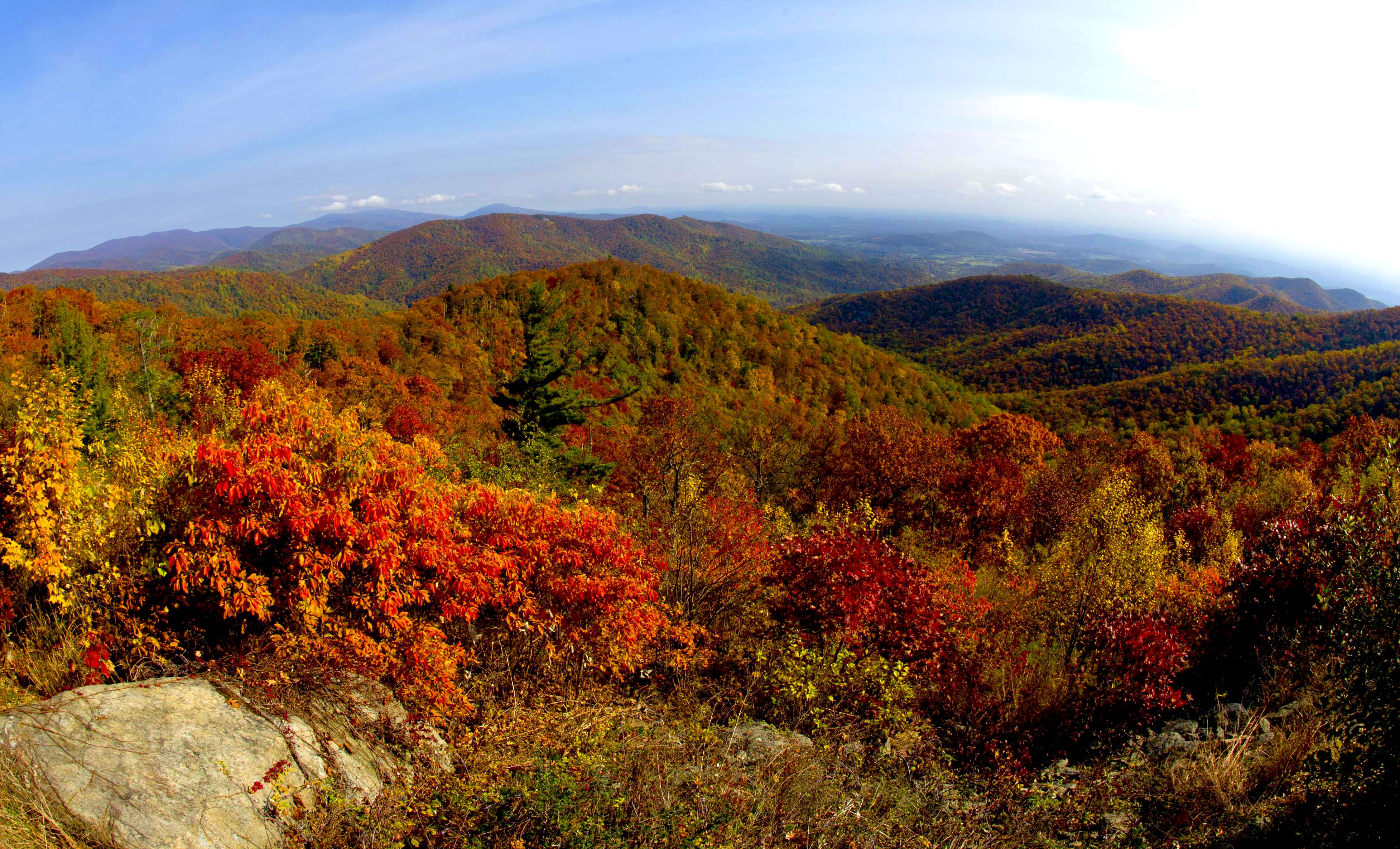 A view of the fall colors October 24, 2015 along Skyline drive in Shenandoah National Park in Virginia. Thousands of visitors descended on the park Saturday creating miles of traffic backups at all of the entrances making traffic control a nightmare for police. AFP PHOTO/KAREN BLEIER / AFP / KAREN BLEIER (Photo credit should read KAREN BLEIER/AFP/Getty Images)