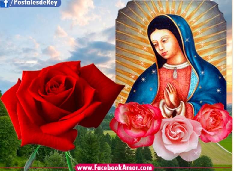 Virgen de Guadalupe frases par compartir