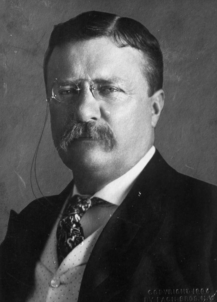 Theodore Roosevelt (Getty)