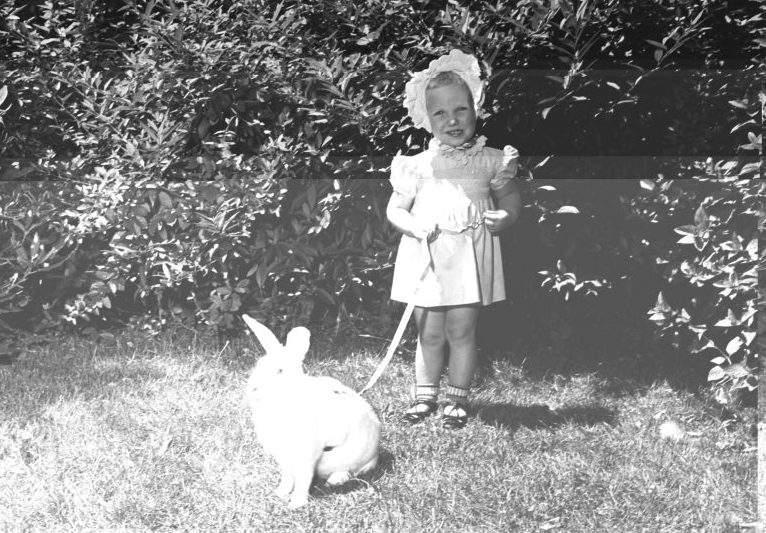 Conejo Pascuas