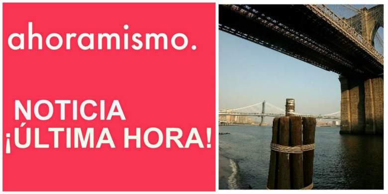 Bebe Muerto Brooklyn Bridge