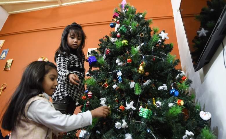 ¿Cuándo y dónde botar el árbol de Navidad 2018 para reciclar?