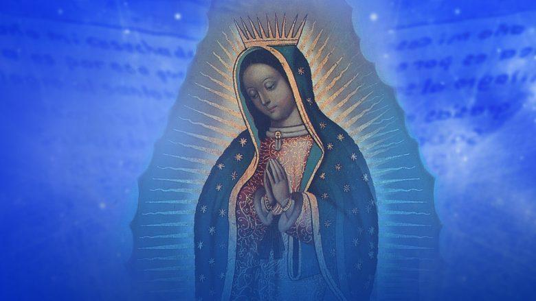 """LIVE STREAM: ¿Cómo ver """"La Rosa de Guadalupe"""" en vivo?, Univisión, Galavisión,"""