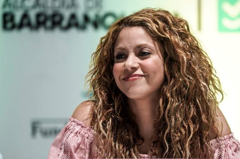Shakira es experta en artes marciales