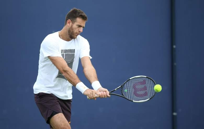 Martín del Potro hace anuncio sobre su futuro: ¿se retira del tenis?