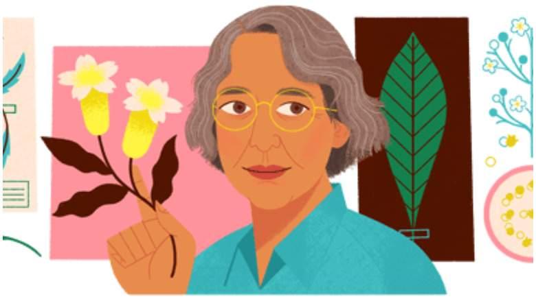 Ynés Mexía es el Google Doogle: ¿Quién es ella?