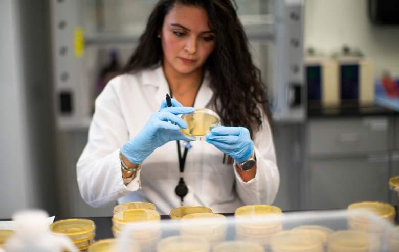 Farmacéutica Abbott lanza tests de coronavirus: los resultados están en 5 minutos