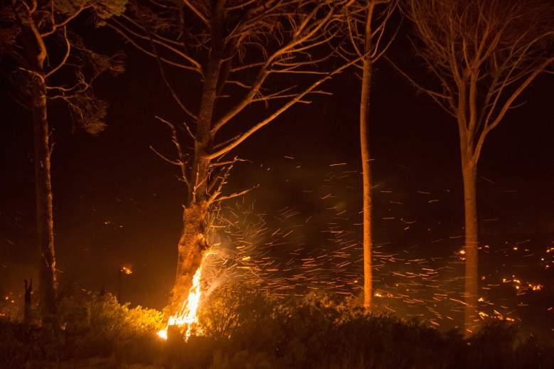 Se registra voraz incendio en Galveston, Texas: Videos
