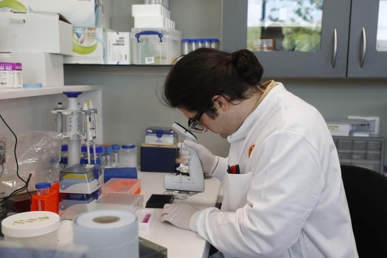 Buenas noticias: científicos descubren anticuerpo que neutraliza el coronavirus: ¿está listo?