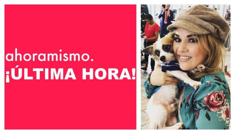 Muere Lupita Elizondo: ¿Cómo murió la reportera de Univisión?