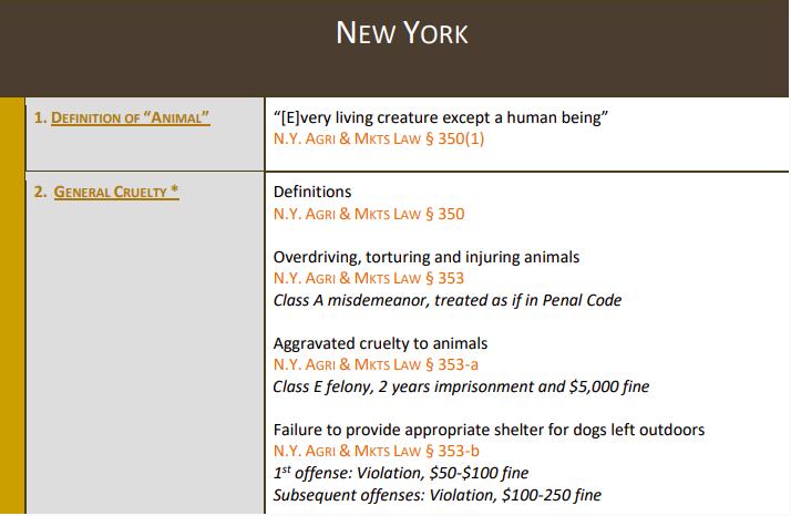 Pauline Waldron está acusada de crueldad agravada hacia los animales, que es un delito grave en Nueva York.