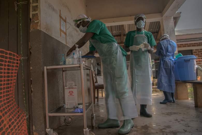 Confirman caso del virus de la viruela del mono en Estados Unidos